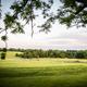 Radnor Hunt's grounds